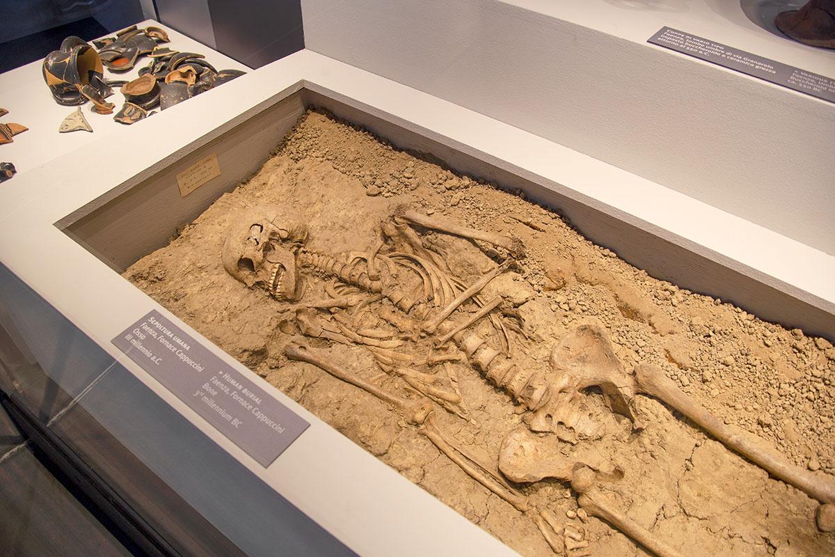 Museo Classis (Ravenna)