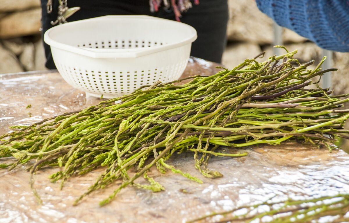 Asparagi selvatici di Ravenna