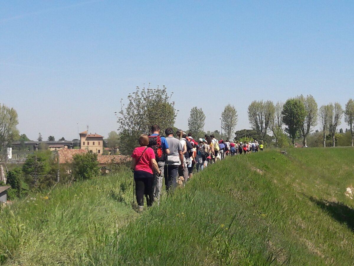 Passeggiata lungo il fiume Lamone