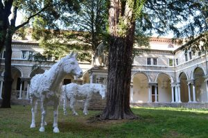 Terre Promesse - Gli asini al Museo Nazionale di Ravenna