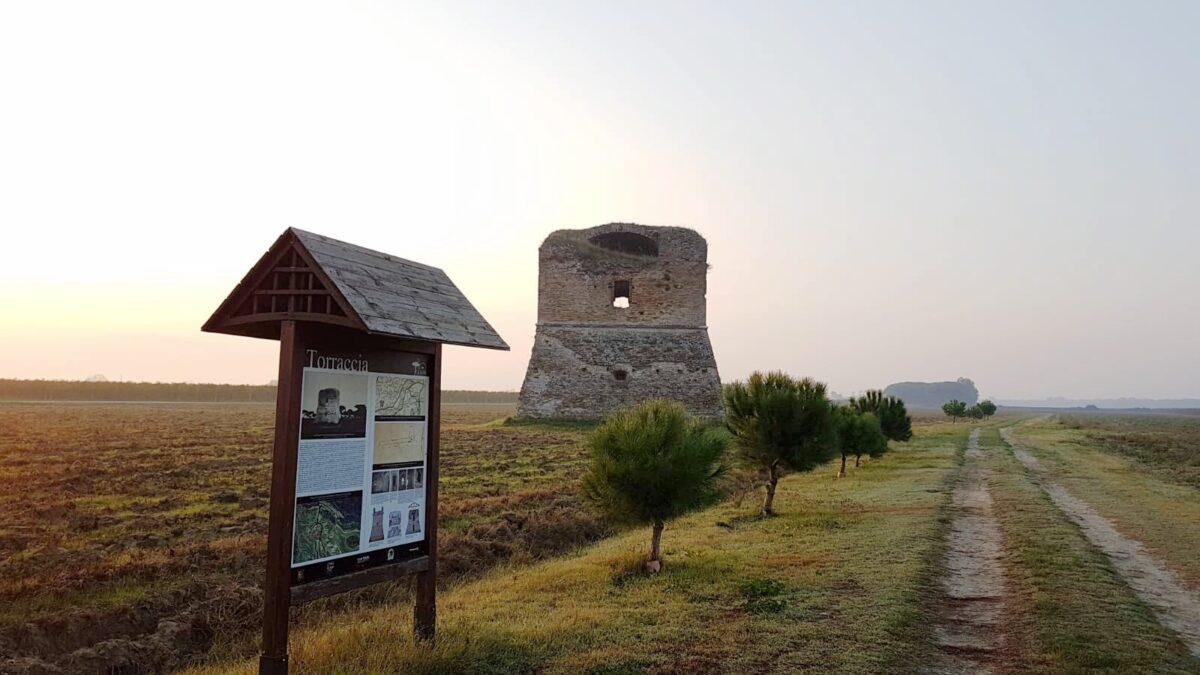La Torraccia, Ravenna