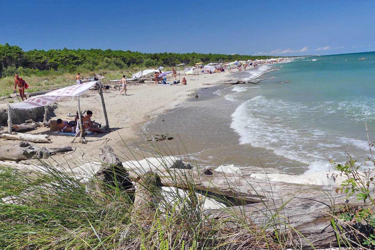Lido di Dante (Ra) - Bassona naturist beach