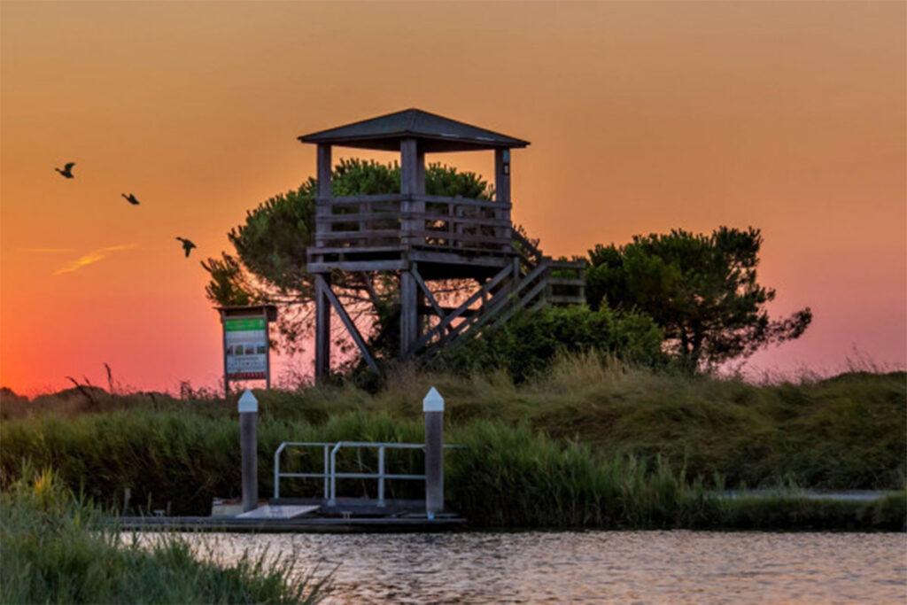 Escursione al tramonto sul fiume Lamone