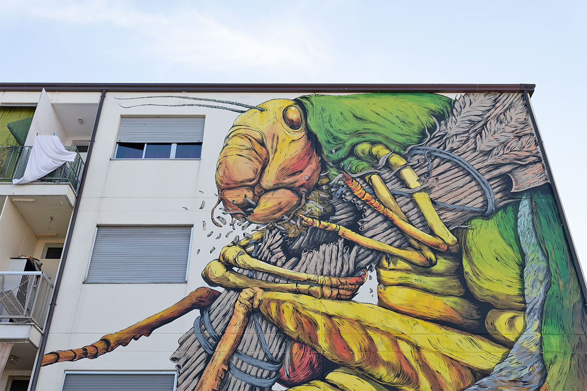 Street Art - Ericailcane